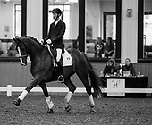 May 28 2016 - Highpoint Diamond Dressage