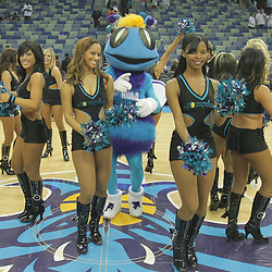 26 December 2008:  during a 88-79 victory by the New Orleans Hornets over Houston Rockets at the New Orleans Arena in New Orleans, LA. .