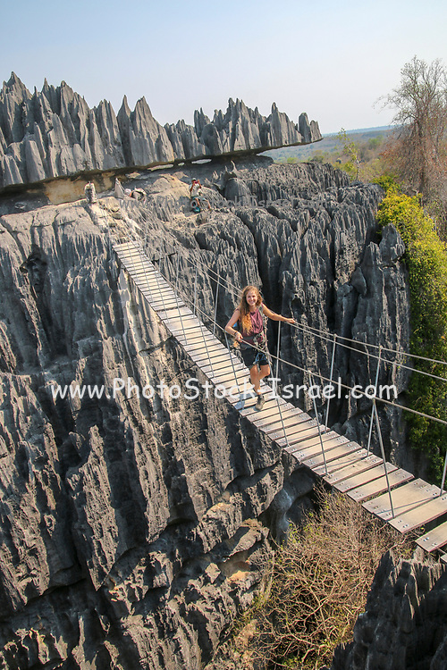 Madagascar, Tsingy de Bemaraha Strict Nature Reserve - eroded Karst limestone