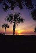 Sunrise, Amelia Island, Florida<br />