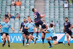 March 18, 2018 - Sydney, NSW, U.S. - SYDNEY, NSW - MARCH 18: Rebels player Richard Hardwick (20) takes the high ball ahead of Waratahs player Alex Newsome(22) at round 5 of the Super Rugby between Waratahs and Rebels at Allianz Stadium in Sydney on March 18, 2018. (Photo by Speed Media/Icon Sportswire) (Credit Image: © Speed Media/Icon SMI via ZUMA Press)