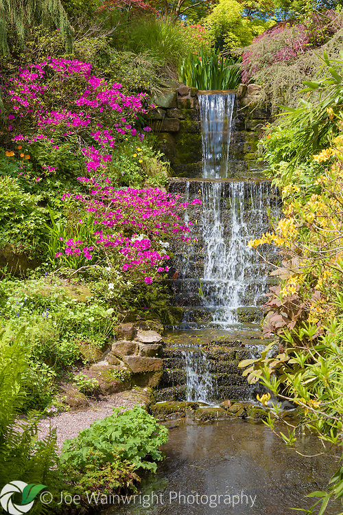 A waterfall in Dorothy Clive Garden, Staffordshire - photographed in May