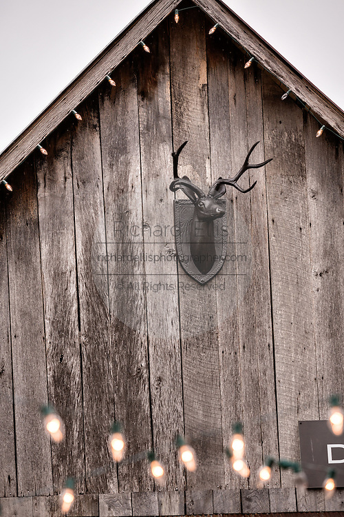 Old barn with Deer head decoration at the gallery of artist David Arms in Leipers Fork, Tennessee.