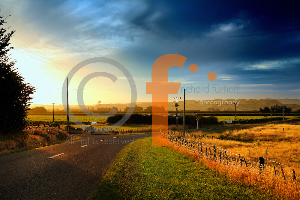 Late Afternoon Light.<br /> Country Road and Farmers Fields, near Hastings, Hawkes Bay, New Zealand.