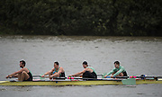 Hammersmith, Greater Game, London, UK. Goldie BC II 2015 Fours Head of the River Race, River Thames [ opposite Chiswick Eyot]  Saturday  07/11/2015 <br /> <br /> [Mandatory Credit: Peter SPURRIER: Intersport Images]