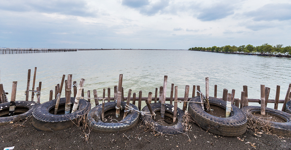 CAPTION: ACCCRN's local partners Bintari have been working with local communities to construct this flood barrier out of used tyres and mangroves in an attempt to stop the sea from advancing further inland. LOCATION: Tapak, Semarang, Indonesia. INDIVIDUAL(S) PHOTOGRAPHED: N/A.