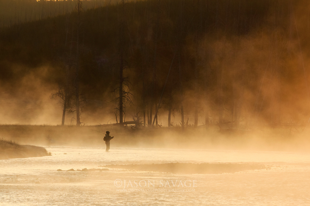 A very cold fall morning on the Madison River near Yellowstone's western side of the park.