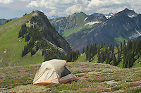 North Cascades backcountry camp, Glacier Peak Wilderness Washington