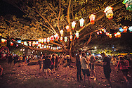 Auckland lantern Festival 2016. Auckland Domain.  February 2016. Photo:Gareth Cooke
