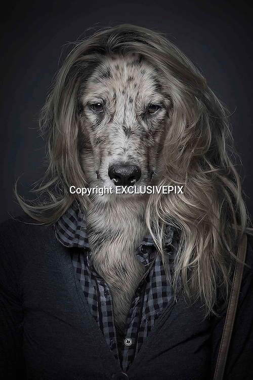 Swiss photographer has 'spontaneous idea' to create astonishing pet portraits by blending photos of dogs with their owners<br /> <br /> Swiss man Sebastian Magnani, 27, took pictures of dogs and their owners<br /> <br /> <br /> They might look like something straight out of a horror film, but these extraordinary images have been created to show the special bond between dogs and their owners.<br /> Photographer Sebastian Magnani, 27, from Brig, Switzerland, took pictures of dogs and their owners using the same position and camera settings before working his magic with editing software.<br /> The result is this startling set of images, which show the pooches with human clothes - one wearing a hoodie, another with a red coat, one with a shirt and cardigan, and another with a blue jacket.<br /> <br /> Mr Magnani wrote on his blog: &lsquo;I had a spontaneous idea in 2009 to blend my dog with my friend in one person. Thus I was able to put on my bedside table a picture of my two favourites in one picture.&rsquo;<br /> Mr Magnani, who now lives in Berne, discovered a love for photography in 2006 and spent five years as a graphic designer in Brig, before deciding to &lsquo;make his passion his profession&rsquo;, his website said.<br /> &copy;SEBASTIAN MAGNANI/EXCLUSIVEPIX