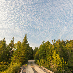 Bridge over the Red River at Pushineer Pond in Aroostook County, Maine. Deboullie Public Reserve Land.