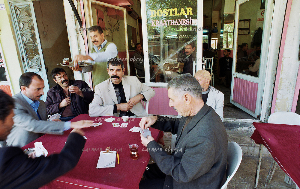 men playing cards at local pub in Sanliurfa