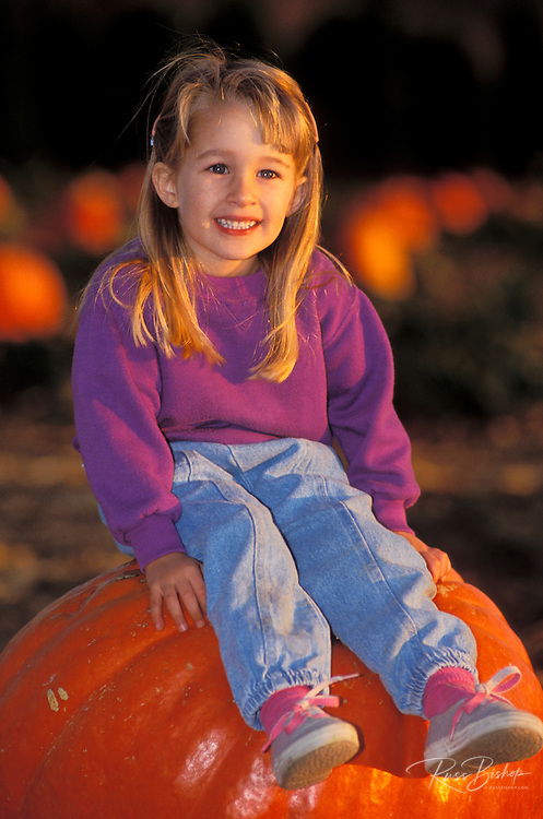 Child (age 3) sitting on a giant pumpkin at the Faulkner Farm, Santa Paula, California
