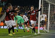 Fulham v Brighton & Hove Albion 29/12/2014