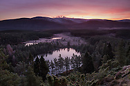 The first frosts of winter in the Scottish Highlands.  I climbed up to this vantage point in the dark and with temperatures well into the minuses.  The beautiful pre dawn colours were reflected in the white heavy frosts that carpeted the landscape.  Cairngorms National Park, Scotland.