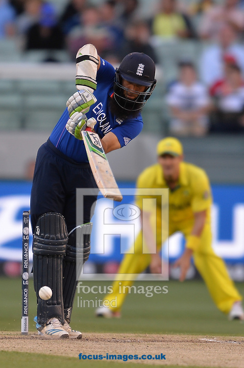 Moeen Ali of England bats during the 2015 ICC Cricket World Cup match at Melbourne Cricket Ground, Melbourne<br /> Picture by Frank Khamees/Focus Images Ltd +61 431 119 134<br /> 14/02/2015