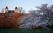 18635Spring Campus