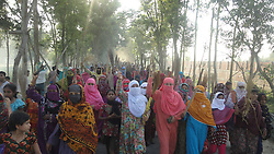 Women villagers of pro-hartal picket attend a strike in Sirajganj district, some 134 km northwest of Bangladesh s capital Dhaka, March 4, 2013. Thousands of pro-hartal picket fought pitched battles with the law enforcers during riots erupted since an Islamist opposition leader was sentenced to death for war crimes,  March 4, 2013. Photo by Imago / i-Images...UK ONLY