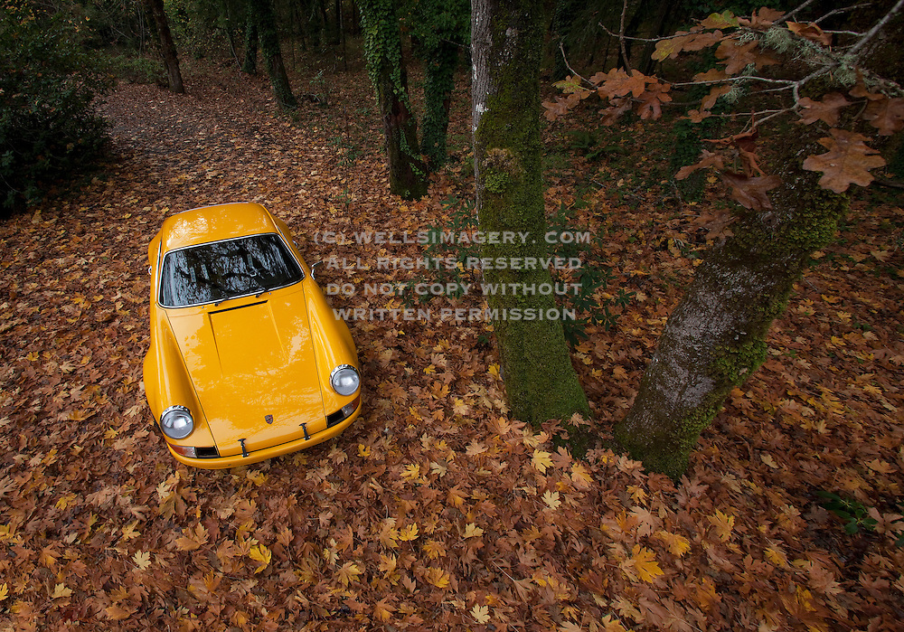Car Photography from Automotive Photographer Randy Wells, Image of a yellow 1972 Porsche 911 ST in the fall in Corvallis, Oregon, Pacific Northwest, property released