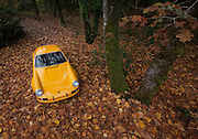 Car Photography from Automotive Photographer Randy Wells, Image of a yellow 1972 Porsche 911 T/ST in the fall in Corvallis, Oregon, Pacific Northwest, property released