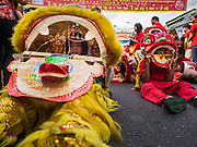 "19 FEBRUARY 2015 - BANGKOK, THAILAND: Lion dancers take a break between performances for Chinese New Year on Yaowarat Road in Bangkok. 2015 is the Year of Goat in the Chinese zodiac. The Goat is the eighth sign in Chinese astrology and ""8"" is considered to be a lucky number. It symbolizes wisdom, fortune and prosperity. Ethnic Chinese make up nearly 15% of the Thai population. Chinese New Year (also called Tet or Lunar New Year) is widely celebrated in Thailand, especially in urban areas that have large Chinese populations.    PHOTO BY JACK KURTZ"