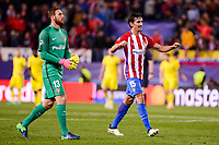 Atletico de Madrid's player Jan Oblak and Stefan Savic celebrating the victory during a match of UEFA Champions League at Vicente Calderon Stadium in Madrid. November 01, Spain. 2016. (ALTERPHOTOS/BorjaB.Hojas)