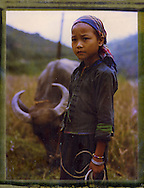 Polaroid 79 portrait of a young girl watching over the family buffalo in Ha Giang Province, Vietnam, Southeast Asia