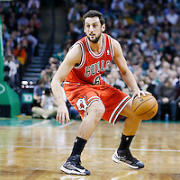 13 February 2013: Chicago Bulls shooting guard Marco Belinelli (8) dribbles during the Boston Celtics 71-69 victory over the Chicago Bulls at the TD Garden, Boston, Massachusetts, USA.