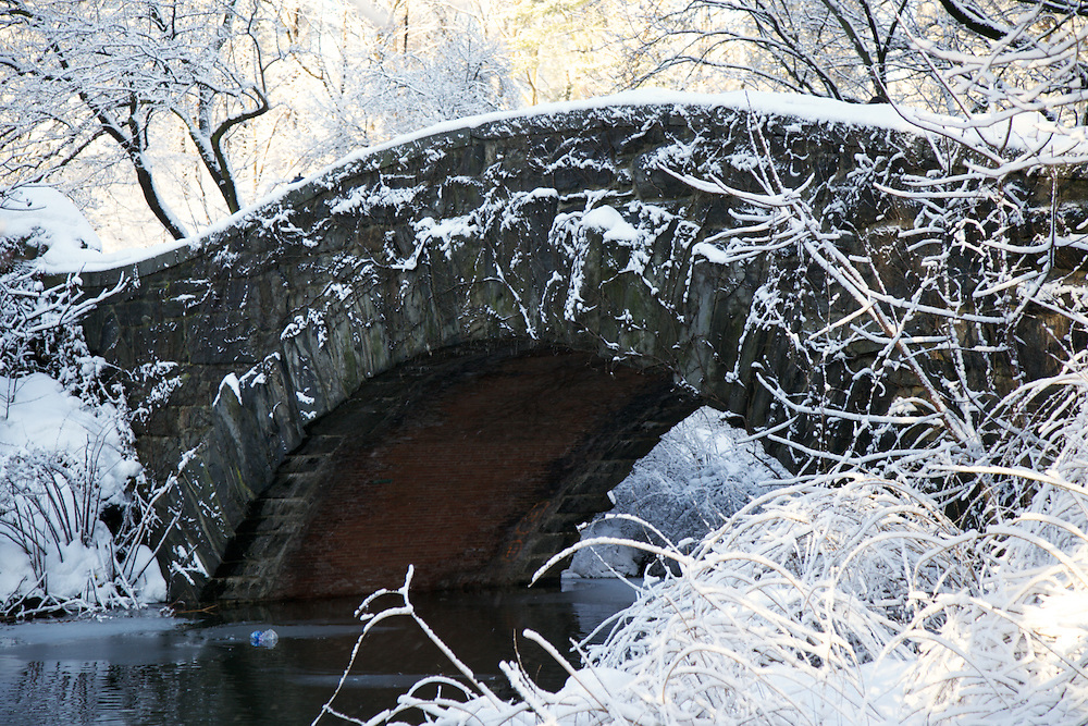 Central Park Bridge in Winter