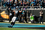 December 10, 2017: Minnesota vs Carolina. Jonathan Stewart scores a touchdown