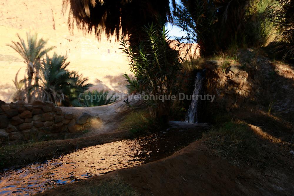 oasis d'Awju, sud marocain, // Awju oasis, southern Morocco