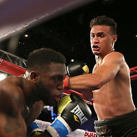 Daniel Rosario (R) punches Alphonso Black during a Telemundo Boxeo boxing match at the A La Carte Pavilion on Friday,  March 13, 2015 in Tampa, Florida. Rosario won the bout by TKO.  (AP Photo/Alex Menendez)