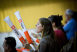 Supporters of Panvita during volleyball game between OK ACH Volley and OK Panvita Pomgrad in 1st final match of Slovenian National Championship 2013/14, on April 6, 2014 in Arena Tivoli, Ljubljana, Slovenia. Photo by Vid Ponikvar / Sportida