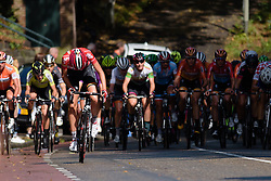 Anouk Rijff (Lotto Soudal) battles the first time up the Cauberg at the 119 km Stage 6 of the Boels Ladies Tour 2016 on 4th September 2016 from Bunde to Valkenburg, Netherlands. (Photo by Sean Robinson/Velofocus).