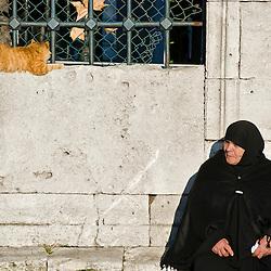 Woman and a cat, Istambul, Turkey.