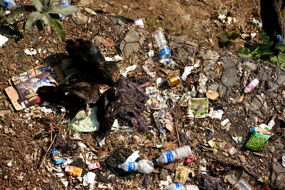 Rubbish just dumped on the roadside and down a hill, plastics, rotting food, bottles