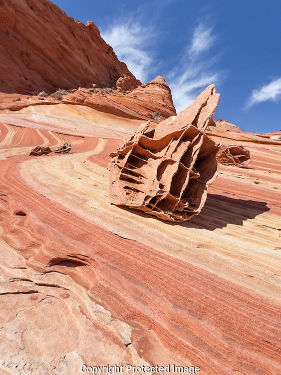 The Wave, Vermilion Cliffs, AZ