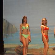 Verkiezing Miss Nederland 2003,