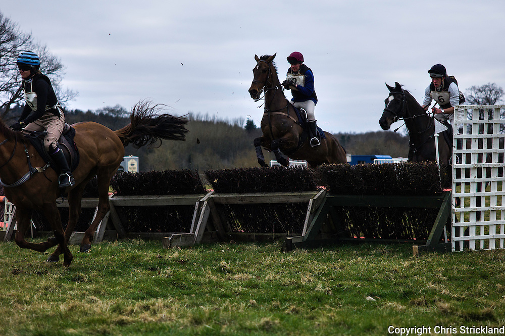 Joanna Walton and Ginny in full control after the first fence.