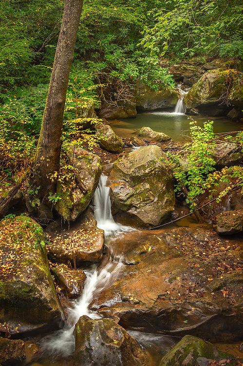 A series of small falls on Coal Run are flanked by yellows and greens, signalling a change in the seasons. New River Gorge, West Virginia.