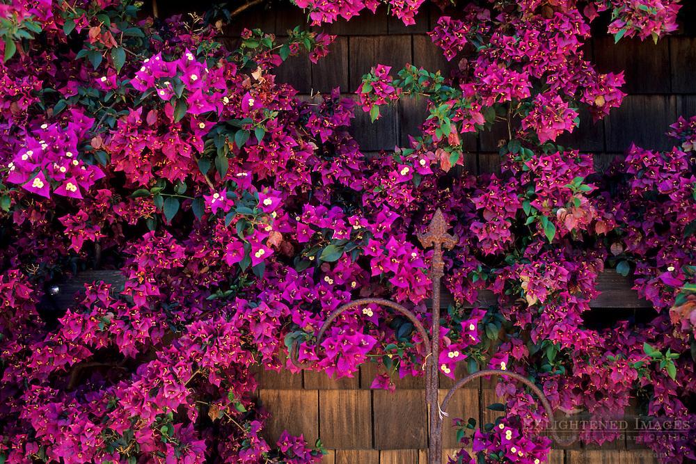 Paraiso Vineyards Tasting Room Salinas Valley, Monterey County, California