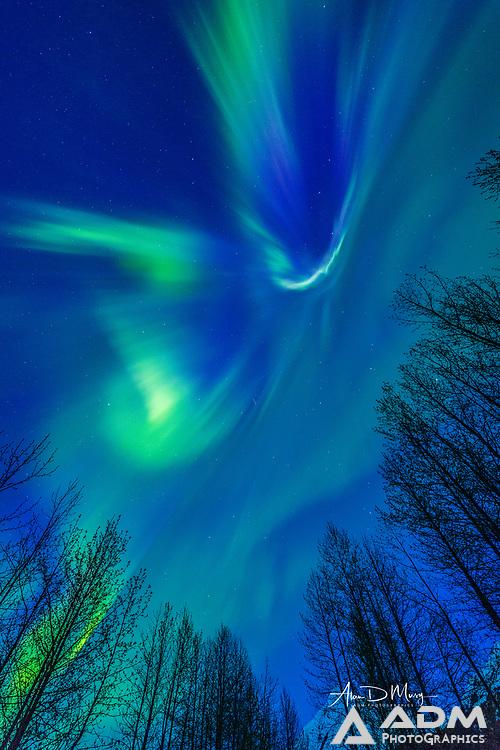 Aurora borealis in Portage Valley