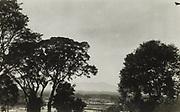 Landschap met sawahs op Oost-Java