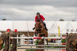 Morssinkhof Simon, BEL, Vivolta De Gree<br /> European Jumping Championship <br /> Zuidwolde 2019<br /> © Hippo Foto - Dirk Caremans<br /> Morssinkhof Simon, BEL, Vivolta De Gree