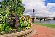 Parkway and the Hawthorne Bridge on the Willamette River, Portland, Oregon