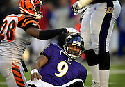 Bengals safety Dexter Jackson (28) gives Raven quarterback Steve McNair (9) a pat after he scrambled for 10 yards and a first down at the Bengals 32 in the fourth quarter. The Ravens beat the Bengals 26-20 at M&T Bank Stadium.