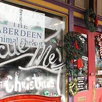 The Friends of the Aberdeen Animal Shelter's storefront encourages people to adopt dogs and cats for Christmas.