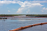 Berm in the bayo where an estimated 4,200 gallons of crude oil attributed to oil and gas extraction company Hilcorp spilled in the marsh near Lake Grande Ecaille, part of Barataria Bay, on July 25.