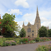 Salisbury Cathedral With Foreground Garden - Salisbury, UK