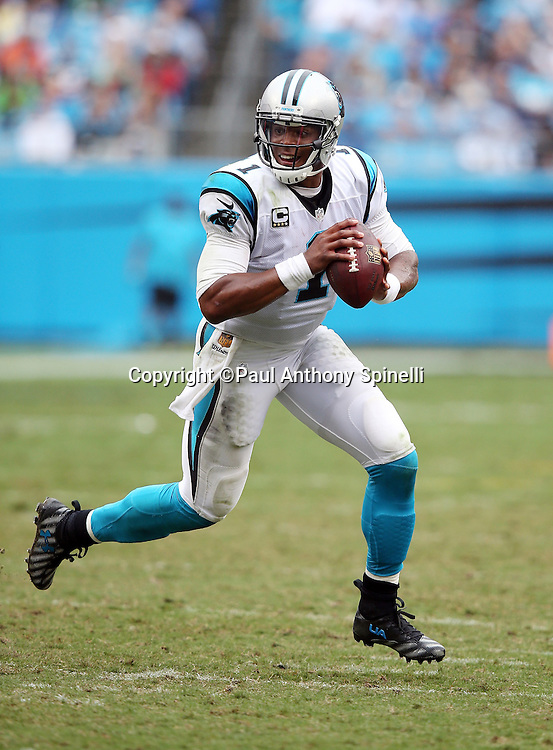 Carolina Panthers quarterback Cam Newton (1) scrambles during the 2015 NFL week 3 regular season football game against the New Orleans Saints on Sunday, Sept. 27, 2015 in Charlotte, N.C. The Panthers won the game 27-22. (©Paul Anthony Spinelli)